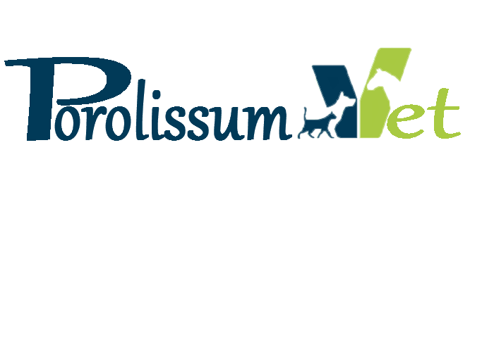 Porolissum